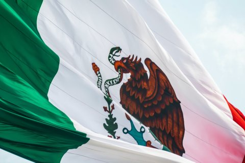 MEX YANKS LICENSES RECENTLY ISSUED TO SEVERAL CASINOS