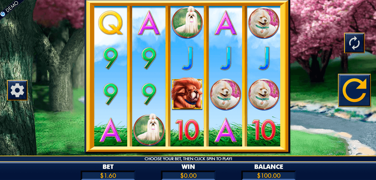 A bark in the park slot machine online lottery]