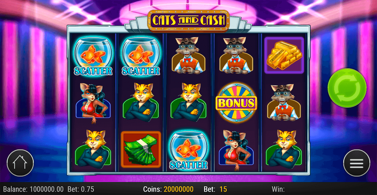 cats cash playn go casino slots