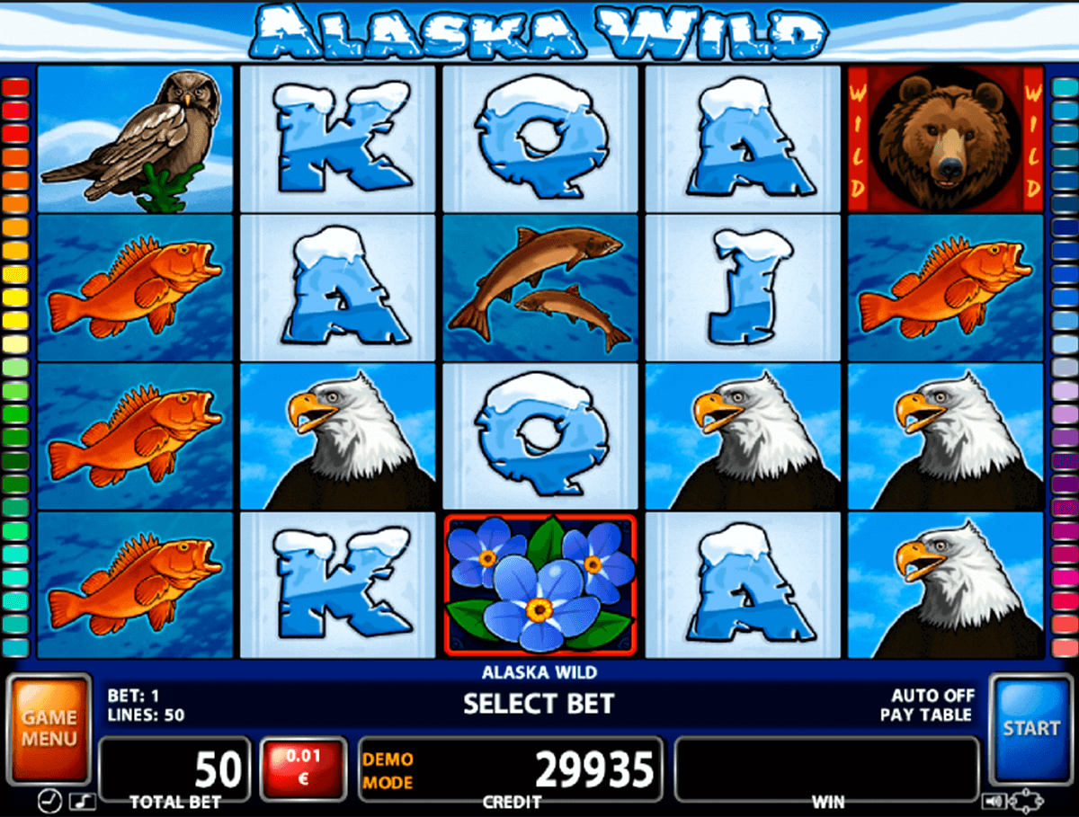 alaska wild casino technology slot machine