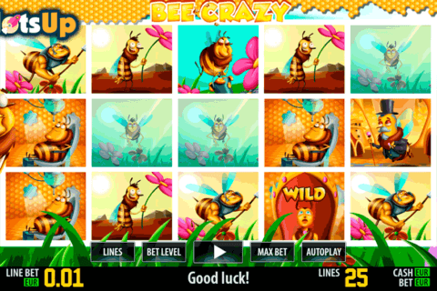 bee crazy hd world match casino slots