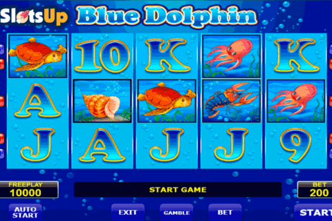 blue dolphin amatic casino slots