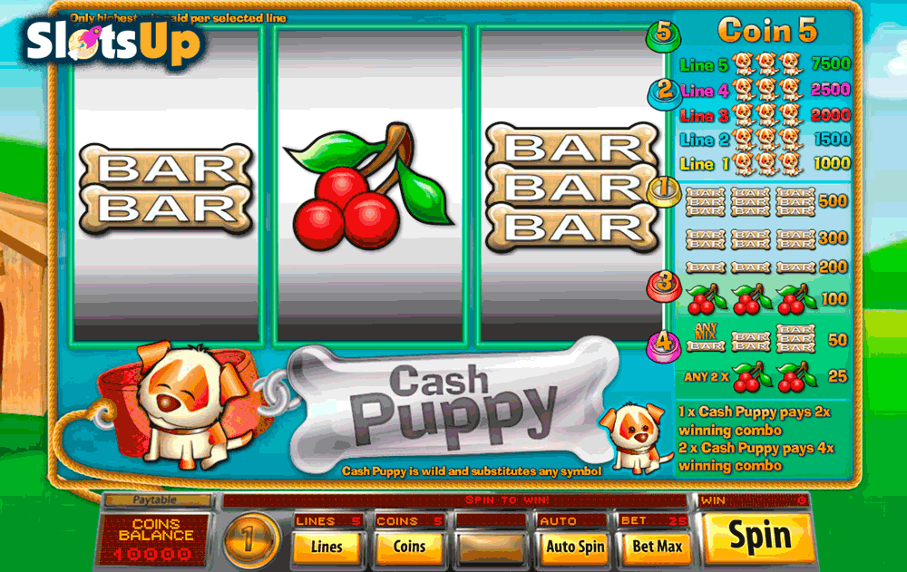 cash puppy saucify casino slots