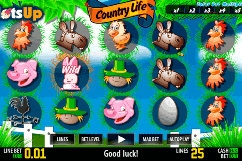 country life hd world match casino slots
