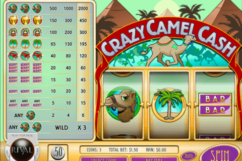 crazy camel cash rival