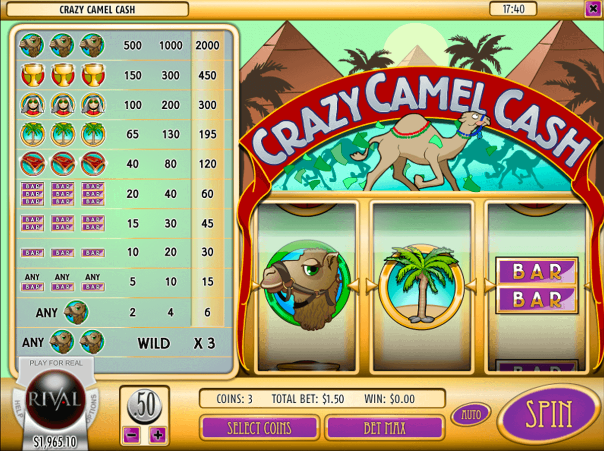 Cash Crazy Online Slot for Real Money - Rizk Casino
