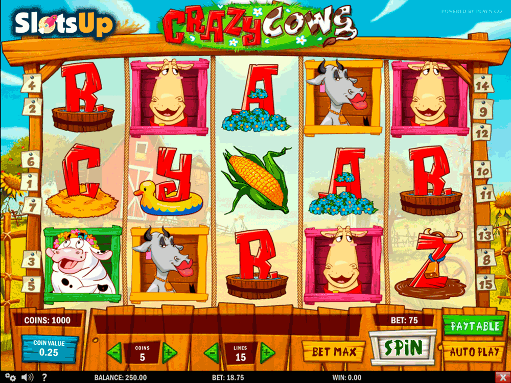 crazy cows playn go casino slots
