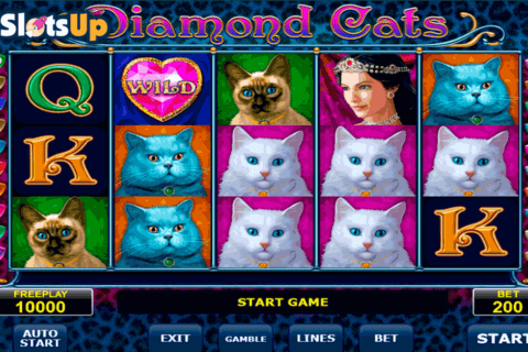 diamond cats amatic casino slots