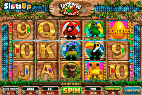 feathered frenzy big time casino slots 480x320