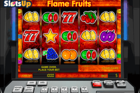 flame fruits novomatic casino slots