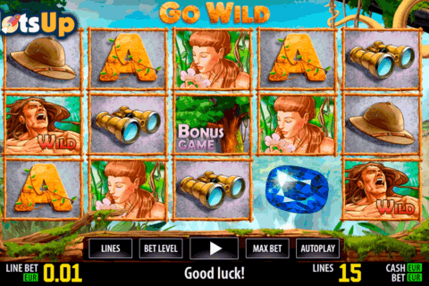 go wild hd world match casino slots
