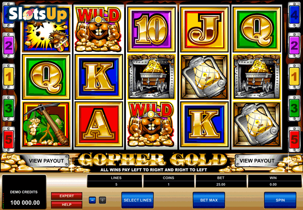 GOPHER GOLD MICROGAMING CASINO SLOTS