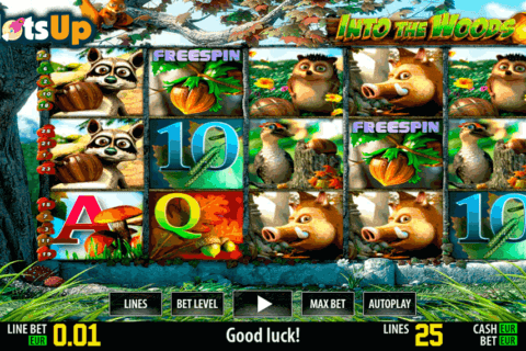 INTO THE WOODS HD WORLD MATCH CASINO SLOTS