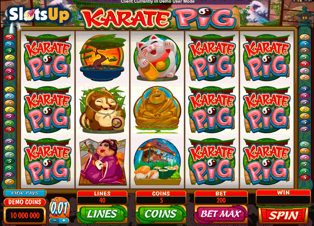 KARATE PIG MICROGAMING CASINO SLOTS