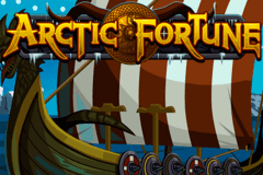 logo arctic fortune microgaming slot game