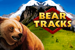 logo bear tracks novomatic slot game