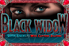 BLACK WIDOW IGT SLOT GAME