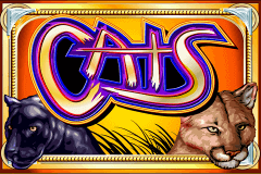 logo cats igt slot game