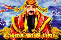 logo choy sun doa aristocrat slot game