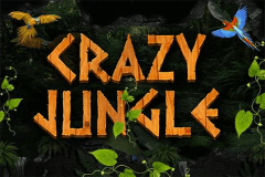 logo crazy jungle pragmatic