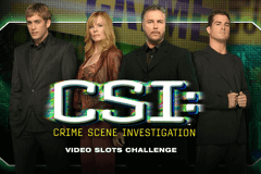 logo csi igt slot game