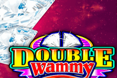 logo double wammy microgaming slot game