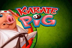 logo karate pig microgaming slot game