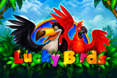 logo lucky birds playson slot game