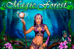 logo magic forest playson slot game