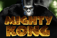 MIGHTY KONG PRAGMATIC