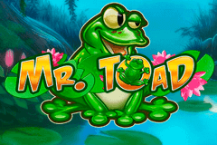 logo mr toad playn go slot game
