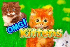 logo omg kittens wms slot game