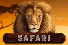 SAFARI ENDORPHINA