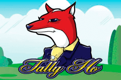 logo tally ho microgaming slot game