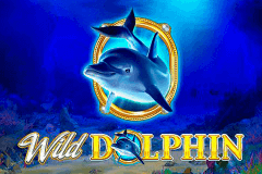 logo wild dolphin gameart slot game