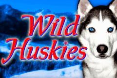 logo wild huskies bally slot game