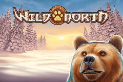 logo wild north playn go slot game