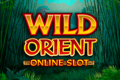 WILD ORIENT MICROGAMING SLOT GAME