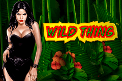 logo wild thing novomatic slot game