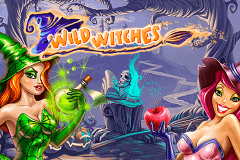 logo wild witches netent slot game