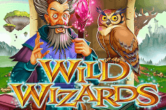 logo wild wizards rtg slot game