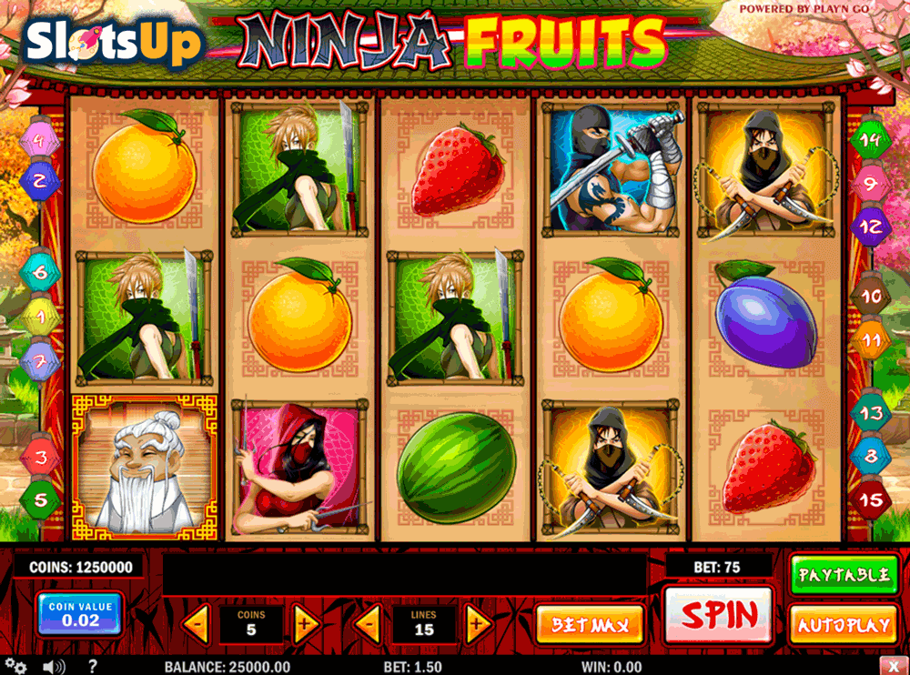 NINJA FRUITS PLAYN GO CASINO SLOTS