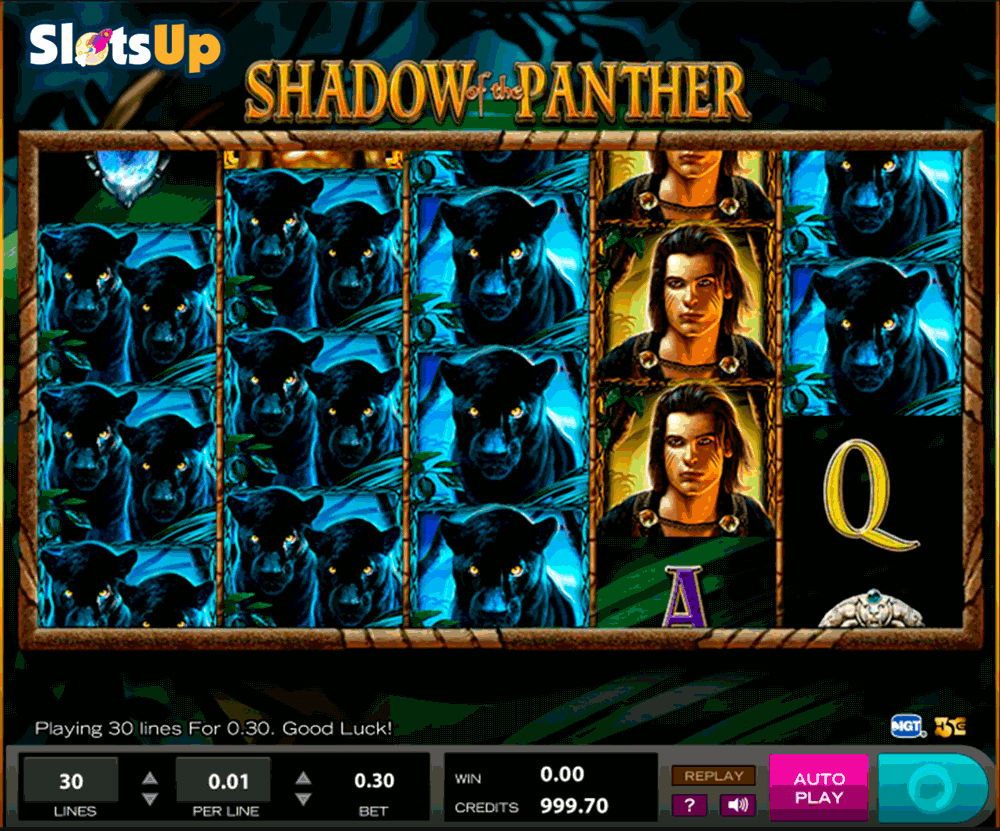 Shadow Of The Panther Slot Machine