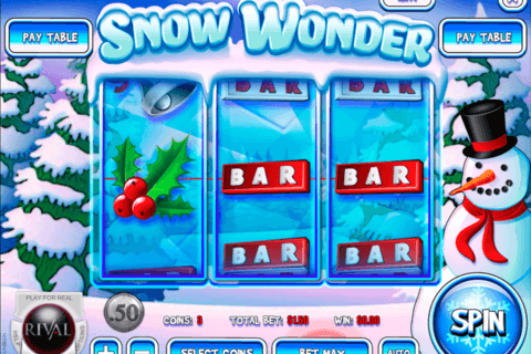 snow wonder rival casino slots 480x320