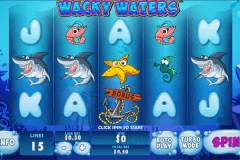 wacky waters playtech 480x320