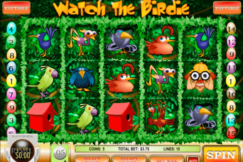 WATCH THE BIRDIE RIVAL CASINO SLOTS