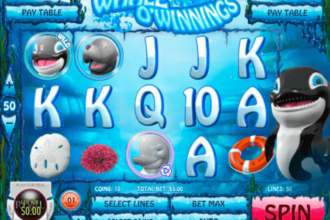 whale o winnings rival casino slots 480x320