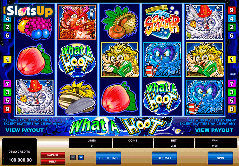 WHAT A HOOT MICROGAMING CASINO SLOTS