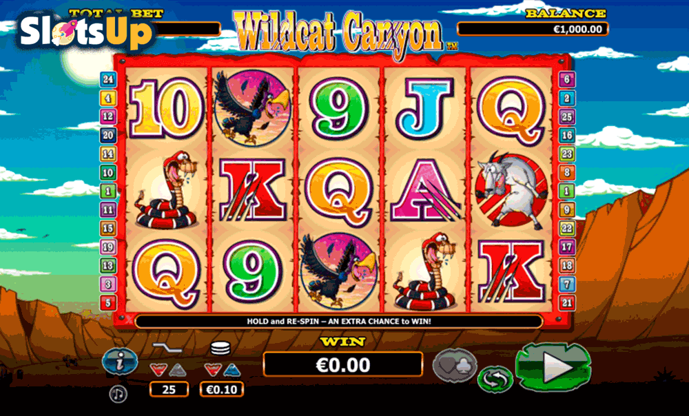 Wild Cat Canyon™ Slot Machine Game to Play Free in NextGen Gamings Online Casinos