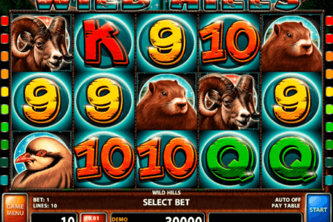 wild hills casino technology slot machine